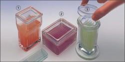 Üveg festőedények